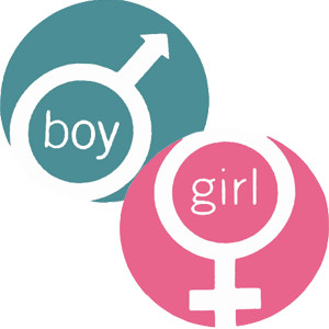Gender Research